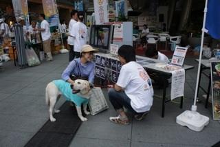 日本ドッグトレーナー協会_保護犬支援プロジェクト_6.29イベント2