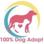 日本ドッグトレーナー協会_保護犬支援プロジェクト