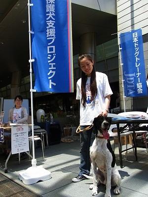 日本ドッグトレーナー協会_保護犬支援プロジェクト_6.29イベント3