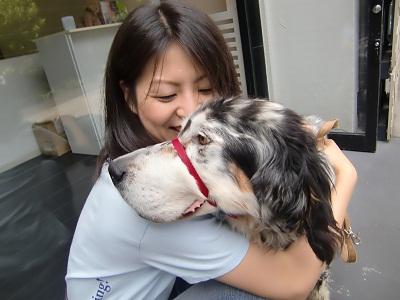 日本ドッグトレーナー協会_保護犬レポート_元7.14-4