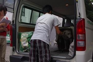 日本ドッグトレーナー協会_保護犬支援プロジェクト_保護犬レポート_エール7.26-3