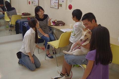 日本ドッグトレーナー協会_保護犬レポート_チップ&デール0820-2