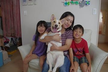 日本ドッグトレーナー協会_保護犬レポート_デール0925-5