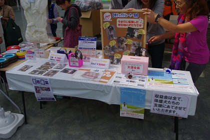 日本ドッグトレーナー協会_保護犬支援プロジェクト_10.30イベント9