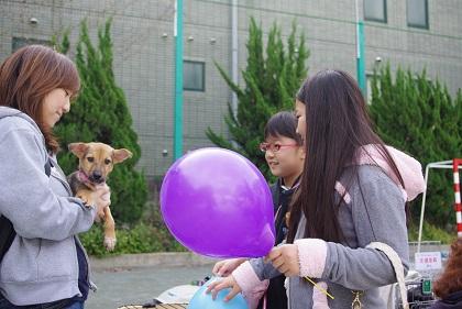日本ドッグトレーナー協会_保護犬支援プロジェクト_10.30イベント6