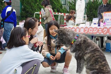 日本ドッグトレーナー協会_保護犬支援プロジェクト_10.30イベント8
