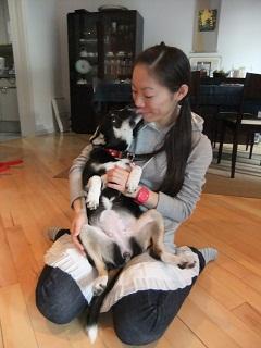 日本ドッグトレーナー協会_保護犬レポート_結1120-1