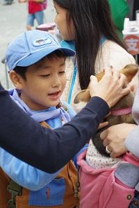 日本ドッグトレーナー協会_保護犬支援プロジェクト_保護犬レポート_楓1117-1