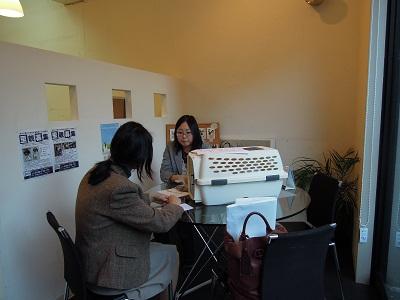 日本ドッグトレーナー協会_保護犬支援プロジェクト_保護犬レポート_楓1117-2