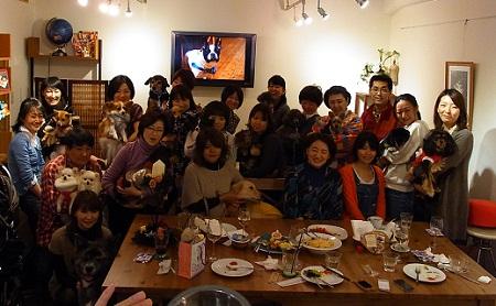 日本ドッグトレーナー協会_保護犬レポート_BUZZ1220-6