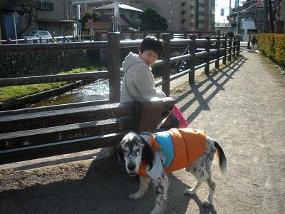 日本ドッグトレーナー協会_保護犬レポート_元12-0114-3