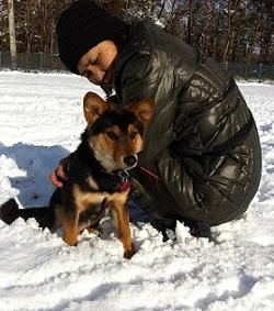 日本ドッグトレーナー協会_保護犬レポート_福0106-1