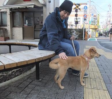 日本ドッグトレーナー協会_保護犬レポート_紅葉2012-0123-2