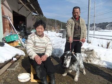 日本ドッグトレーナー協会_保護犬レポート_元12-0207-4