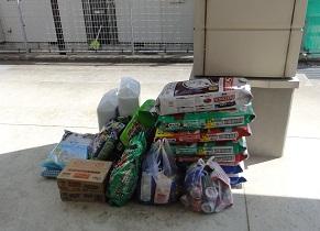 日本ドッグトレーナー協会_保護犬支援プロジェクト_20120410-1