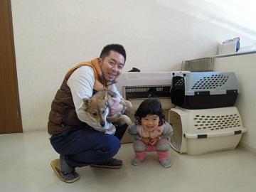 日本ドッグトレーナー協会_保護犬レポート_すみれ2012-0410-1
