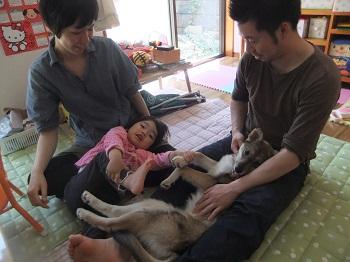 日本ドッグトレーナー協会_保護犬レポート_すみれ2012-0508-3