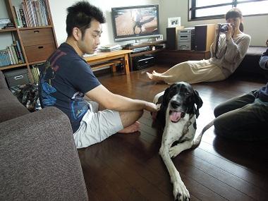 日本ドッグトレーナー協会_保護犬レポート_太斗2012-0717-2