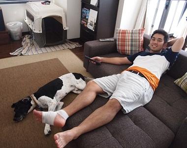 日本ドッグトレーナー協会_保護犬レポート_太斗2012-0717-3