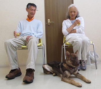 日本ドッグトレーナー協会_保護犬レポート_みずき2012-0708-2