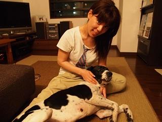 日本ドッグトレーナー協会_保護犬支援プロジェクト_太斗_20120801-4