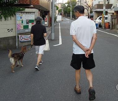 日本ドッグトレーナー協会_保護犬支援プロジェクト_保護犬レポート_みずき12-0920-2
