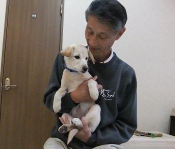 日本ドッグトレーナー協会_保護犬支援プロジェクト_保護犬_5つ子_20121024-4