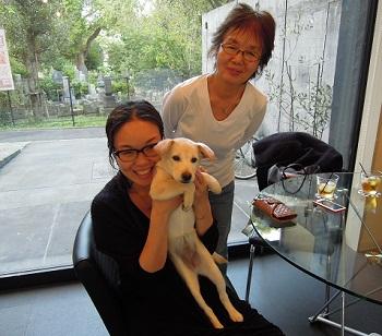 日本ドッグトレーナー協会_保護犬支援プロジェクト_保護犬_5つ子_20121107-6