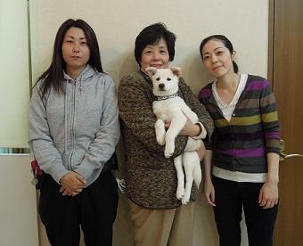 日本ドッグトレーナー協会_保護犬レポート_ミラ_2012-1101-5